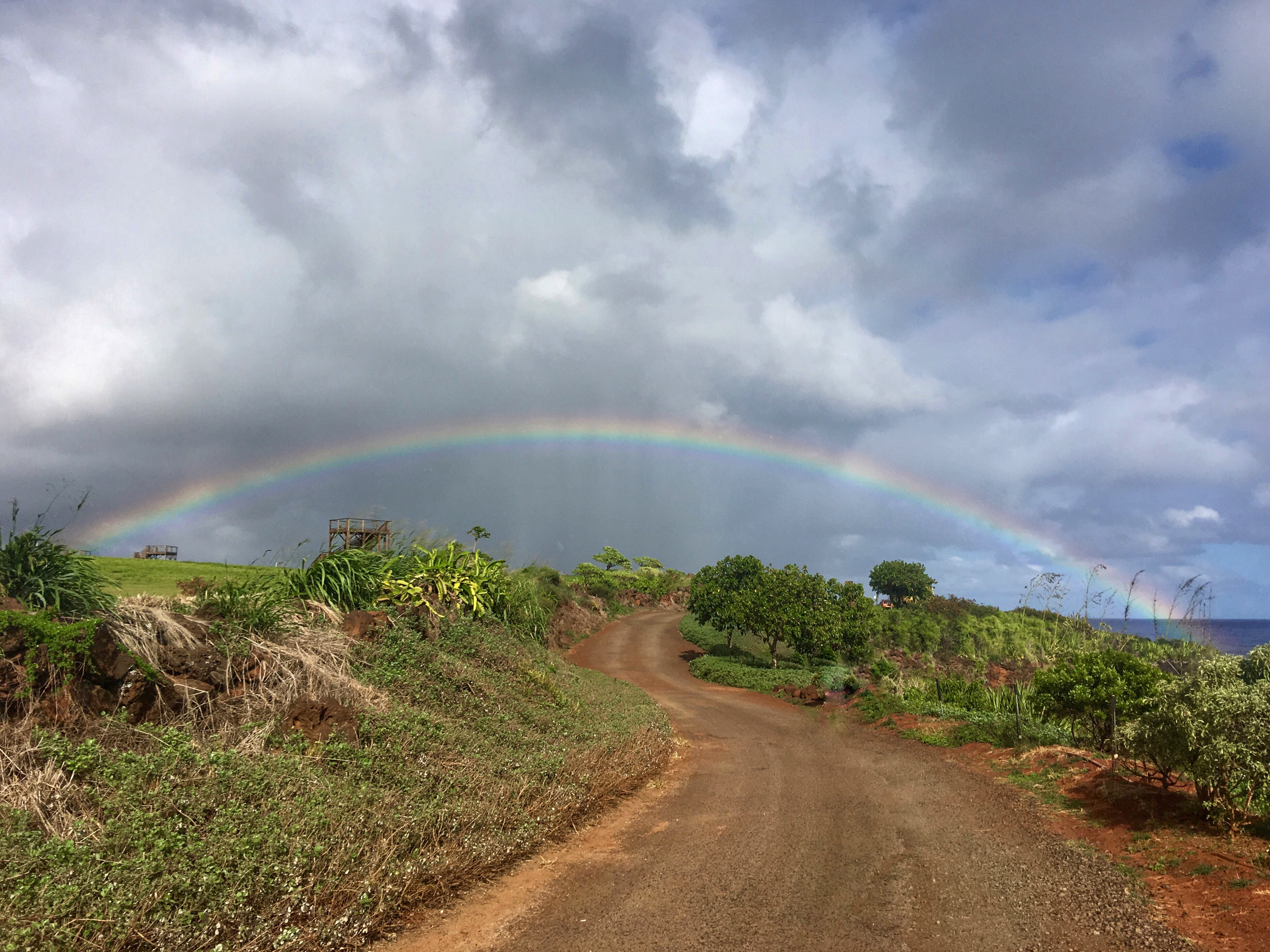 rainbow-photo-kauai-dirt-road-business-money-entrepreneur-financial-freedom-how-to-make-money-online-work-from-home-jobs-online-jobs-earn-money-online-passive-income-small-business-ideas-FFJ-Laurens-Financial-Freedom-Journey-hawaii