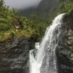 pictures-waterfall-hike-mt-waialeale-kauai-business-money-entrepreneur-financial-freedom-how-to-make-money-online-work-from-home-jobs-online-jobs-earn-money-online-passive-income-small-business-ideas-FFJ-Laurens-Financial-Freedom-Journey-hawaii